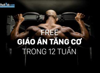 [Free] Lịch tâp gym tăng cơ bắp trong 12 tuần trị giá 99,95$