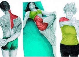 34 tư thế kéo giãn cơ bắp bạn cần biết