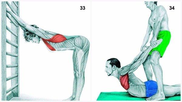 34 tư thế giãn cơ bắp bạn cần biết
