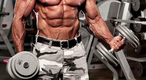 10 cách tăng cơ hiệu quả dành cho người mới tập gym