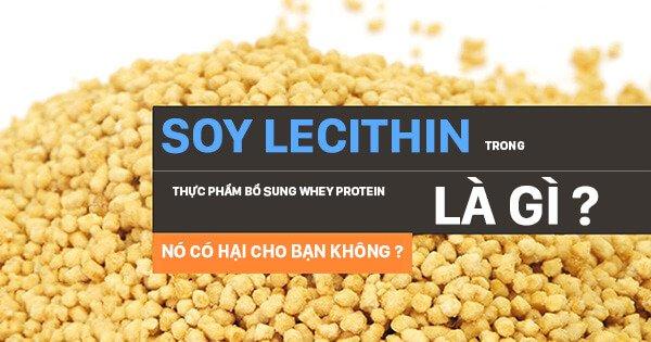 Soy Lecithin là gì ? Tại sao nó có mặt trong Whey protein và nó có tốt không ?