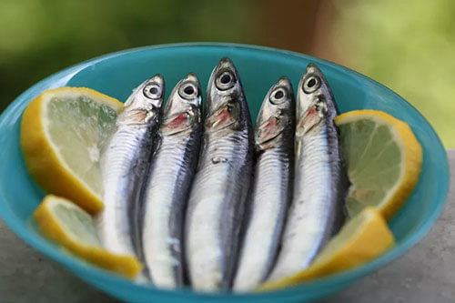 Cá cơm (Omega 3: 1256mg, Omega 6: 82.5mg)