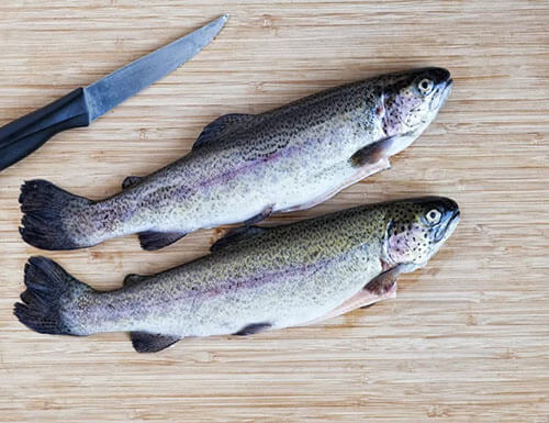 Cá hồi cầu vồng (Omega 3: 812mg, Omega 6: 239mg)
