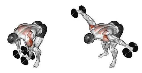 Dumbbell Bent Over Raise