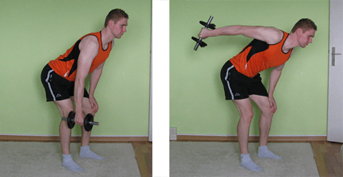 Dumbbell Straight Arm Pullback 2