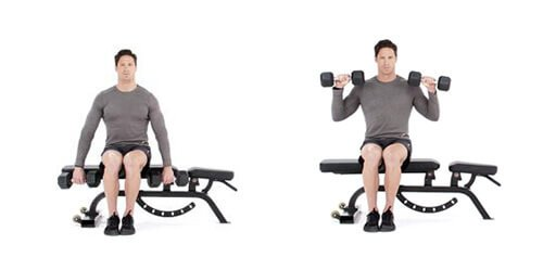 Seated Reverse Dumbbell Curl 2 (1)
