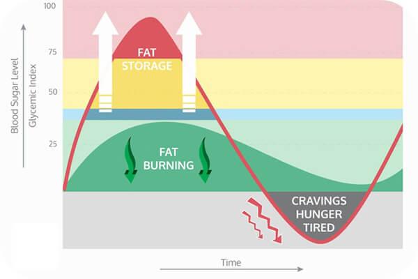 Carbohydrate là gì ? Cơ bản nhưng không phải ai cũng hiểu rõ
