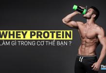 Sự thật về hoạt động của Protein trong cơ thể của dân tập tạ