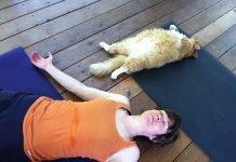 Bắt đầu tập Yoga như thế nào? Đây là câu trả lời cho người mới bắt đầu