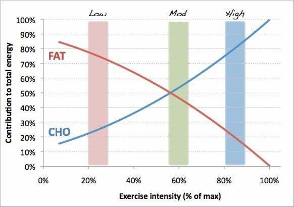 Chế độ ăn kiêng Low Carb hoặc Keto có làm giảm hiệu suất tập luyện không ?