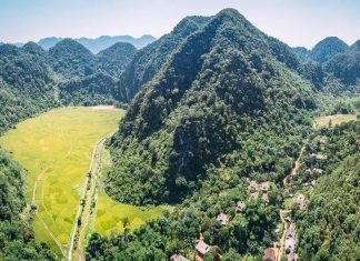 Giải chạy bộ Vietnam Jungle Marathon 2019
