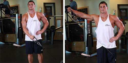 Standing Low-Pulley Deltoid Raise