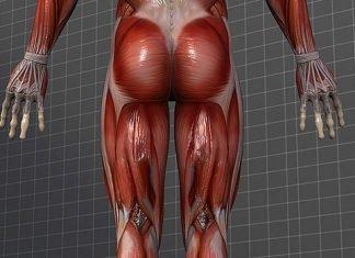 Những thiếu sót thường gặp khi tập cho thân dưới ở gymer