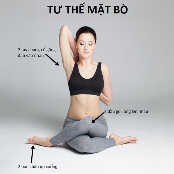 Gomukasana - Tư thế mặt bò - Tư thế yoga trong bơi lội