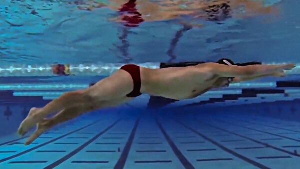 Hướng dẫn kỹ thuật bơi nhanh nhất: Đạp chân cá heo - Dolphin Kick