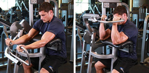 Machine Preacher Curls
