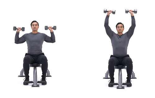 Bài tập vai Seated dumbbell shoulder press
