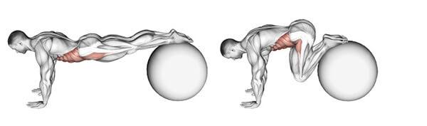 Bài tập bụng ball knee roll-in